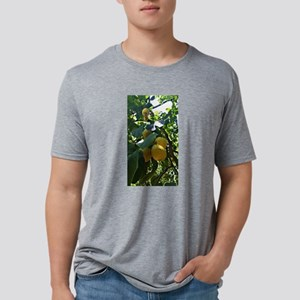 Lemons of Sorrento, Italy T-Shirt