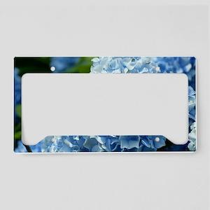 Blue License Plate Holder