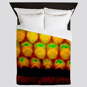 Inner ear sensory hairs Queen Duvet