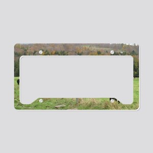 outabout 088 License Plate Holder