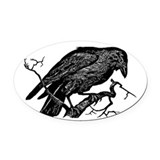 Crow Oval Car Magnets