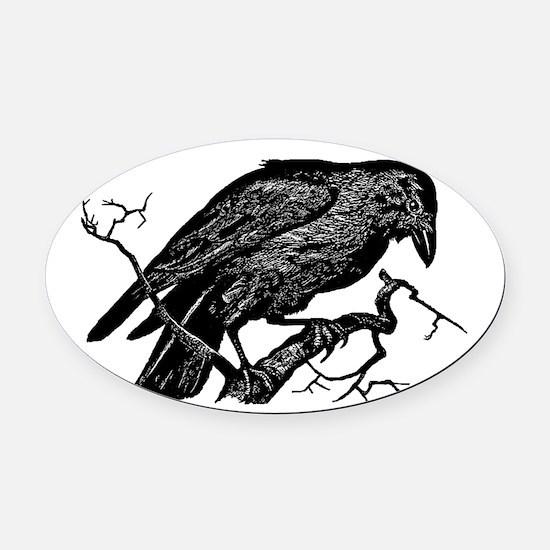 Vintage Raven in Tree Illustration Oval Car Magnet