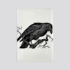 Vintage Raven in Tree Illustration Rectangle Magne