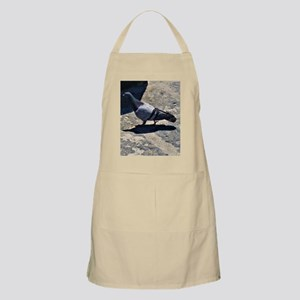 Pigeon in Italy Light Apron