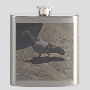 Pigeon in Italy Flask