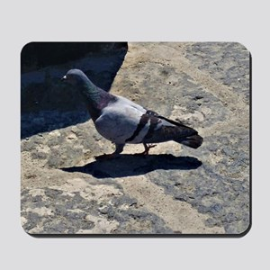 Pigeon in Italy Mousepad
