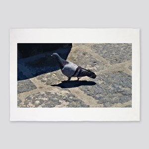 Pigeon in Italy 5'x7'Area Rug