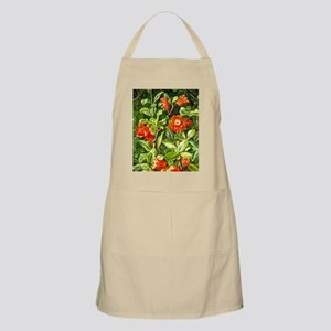 Flowers of the Pomegranate-Marianne North ar Apron