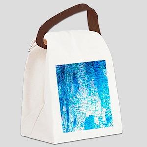 structure aqua Canvas Lunch Bag