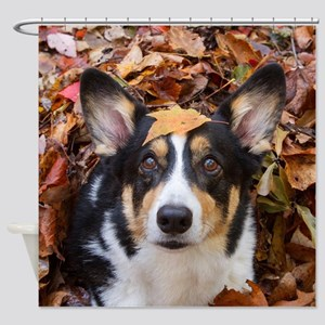 Corgi and Fall Leaves Shower Curtain