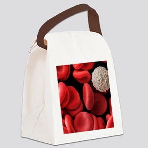 Red and white blood cells, SEM Canvas Lunch Bag