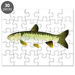 Grass Carp Puzzle