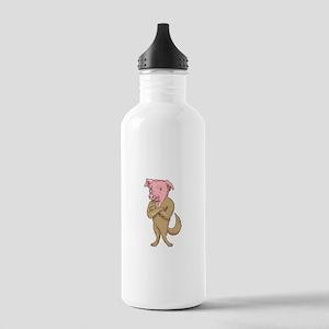 Pig Dog Standing Arms Crossed Cartoon Water Bottle