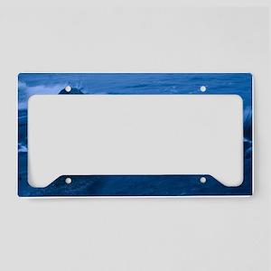 Winter waves License Plate Holder