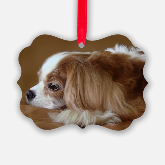 Cavalier King Charles Spaniel, Blenheim Ornament