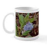 Bluebells Mug