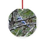 Valentine Blue Jay Ornament (Round)