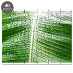 Plantain Leaf Puzzle Hoja De Platano Rompecabezas