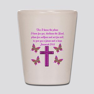 JEREMIAH 29:11 Shot Glass