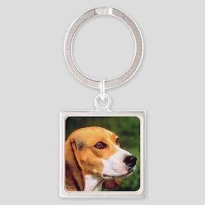 Cute Beagle Square Keychain