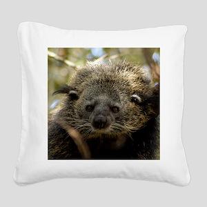 002Bearcat Square Canvas Pillow