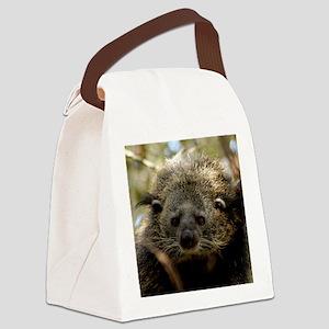 002Bearcat Canvas Lunch Bag