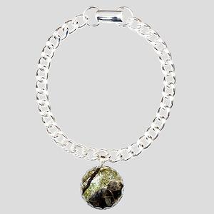 001Bearcat Charm Bracelet, One Charm