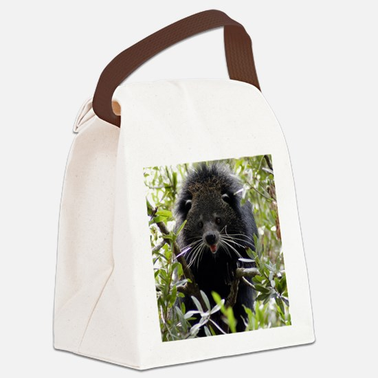004Bearcat Canvas Lunch Bag