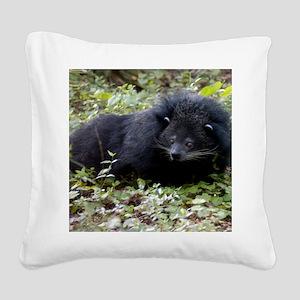 008Bearcat-edt Square Canvas Pillow