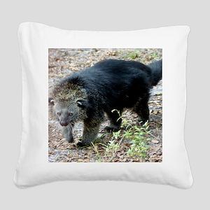 003Bearcat Square Canvas Pillow