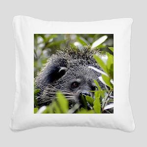 006Bearcat Square Canvas Pillow