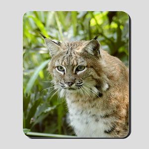BobcatBCR010 Mousepad