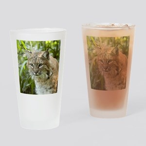BobcatBCR010 Drinking Glass