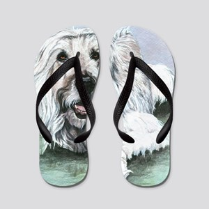 Cormac 11x17 Flip Flops