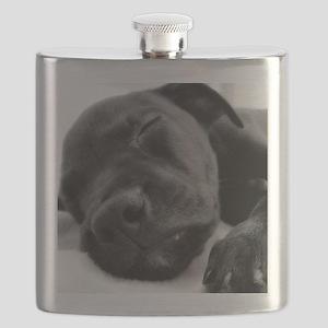 DSC00965 B Flask