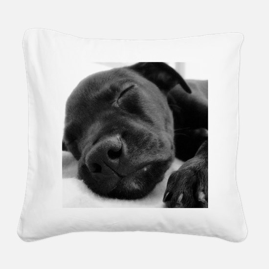 DSC00965 B Square Canvas Pillow