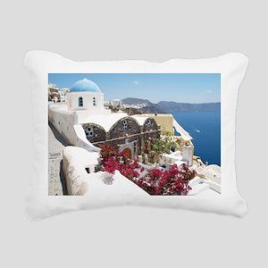 P1010410 Rectangular Canvas Pillow