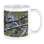 Blue Jay in Apple Tree Mug