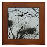 Hovering Over the Nest Framed Tile