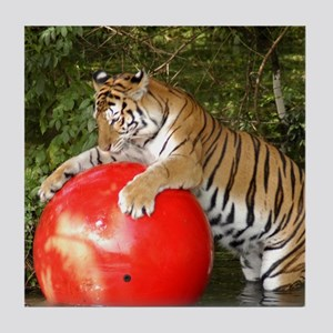 Tiger_Aroara050 Tile Coaster