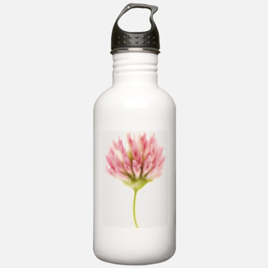 painted pink Water Bottle