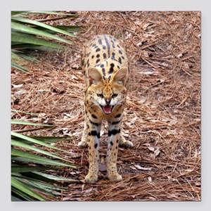 "serval 018 Square Car Magnet 3"" x 3"""