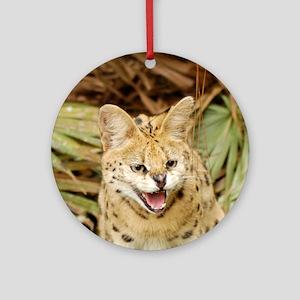 serval 032 Round Ornament