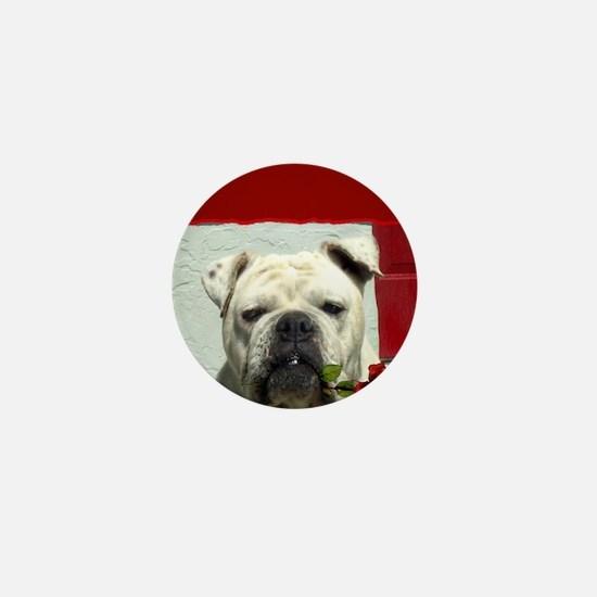 Thank you bulldog Mini Button