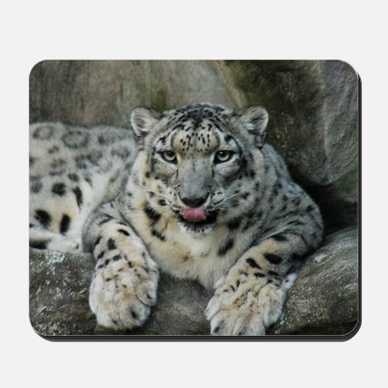 SnowLeopardBCR008 Mousepad
