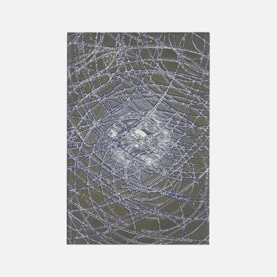 crystal webs Rectangle Magnet