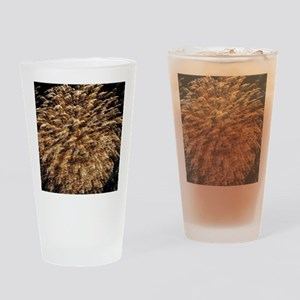 Roar on the Shore Drinking Glass