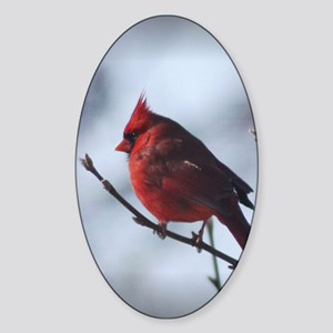cardinaljournal Sticker (Oval)