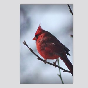 cardinaljournal Postcards (Package of 8)