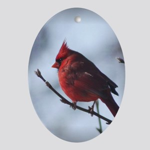 cardinaljournal Oval Ornament